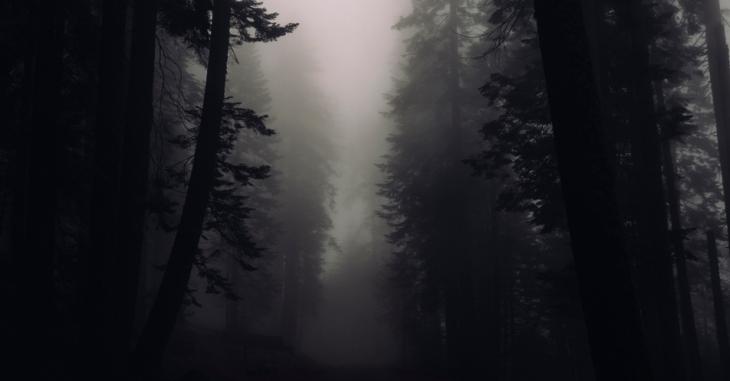sobre_a_escuridao