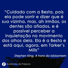 Livro Hora Lobisomem Stephen King Frase