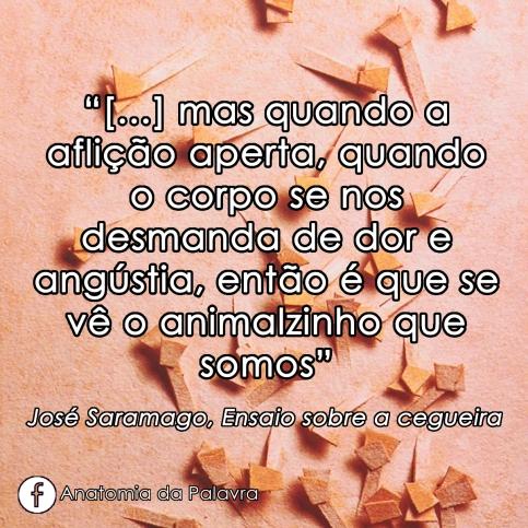 Livro Ensaio Cegueira José Saramago Frase