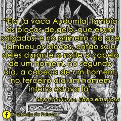 Citação livro Edda em Prosa, Snorri Sturluson, mitologia nórdica