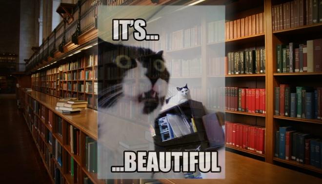 Capas bonitas de livros, gatos, meme