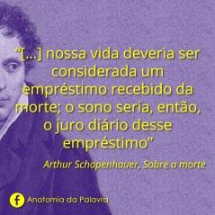Frases Schopenhauer