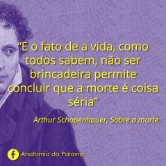 Frases Arthur Schopenhauer