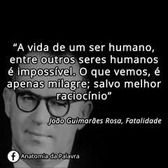 Frase de João Guimarães Rosa