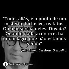 Frase de Guimarães Rosa