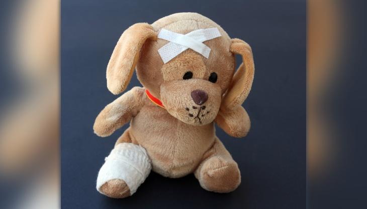 Bicho de pelúcia machucado cachorro curativos