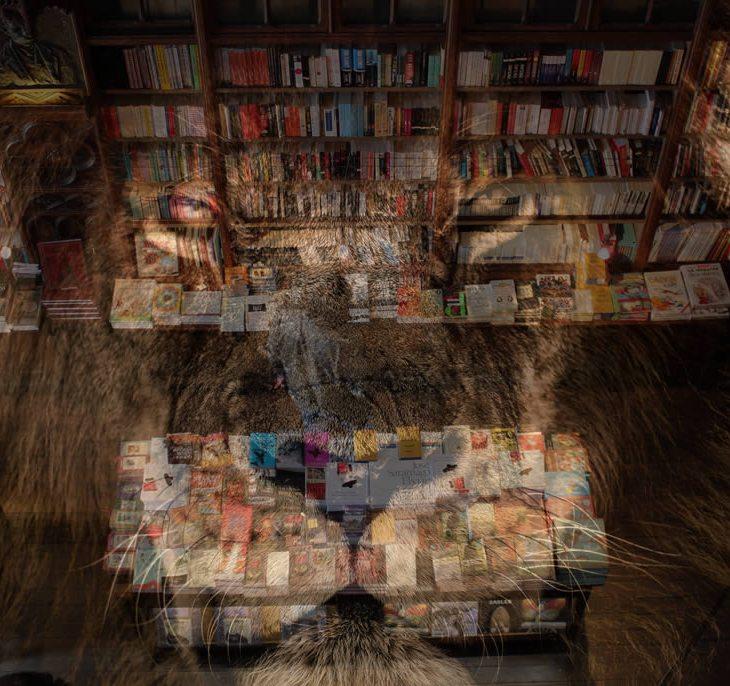Leão do imposto sobrepondo um homem comprando em uma livraria.