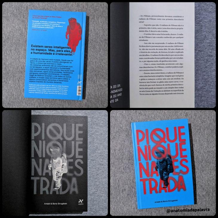 Detalhes do livro Piquenique na Estrada, pela editora Aleph